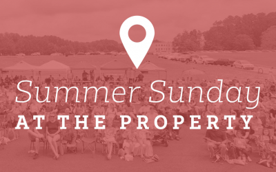 Summer Sunday at the Property